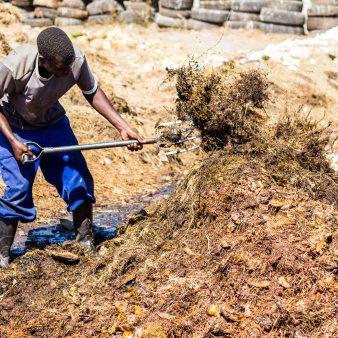 Transformation des déchets organiques en compost